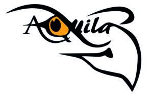 het logo van Aquila Movement